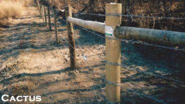 Cactus Farm Fence