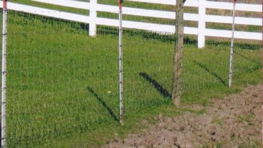 Maverick Farm Fence