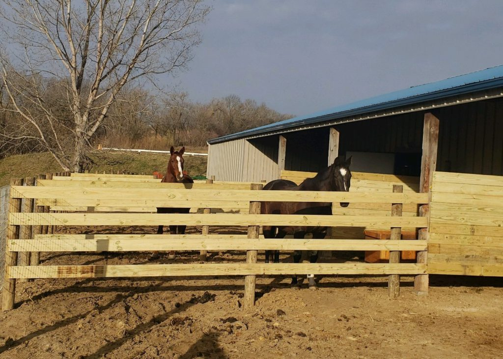 Custom Ag CCA Wood Fence